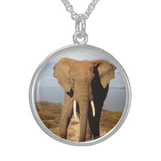 Elephant Beach Day Outing, Sterling Silver Necklace