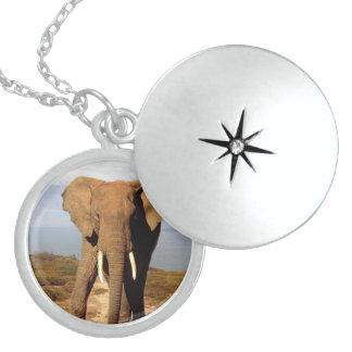 Elephant_Beach_Sterling_Silver_Locket_Necklace Round Locket Necklace