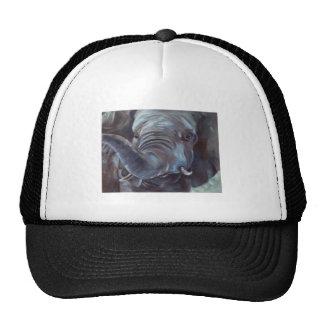 Elephant Big Boy Hat
