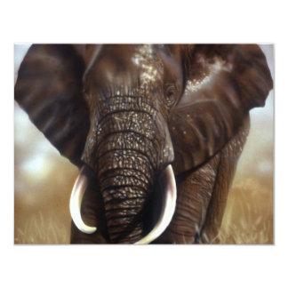 Elephant Bull Prints Invitations