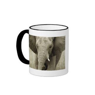 Elephant calendars coffee mugs & cups