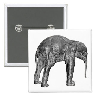 Elephant Calf in Black and White Pinback Buttons