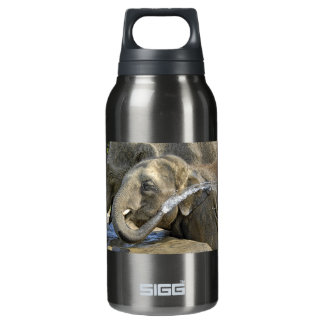 Elephant Calf Insulated Water Bottle
