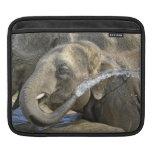 Elephant Calf iPad Sleeves
