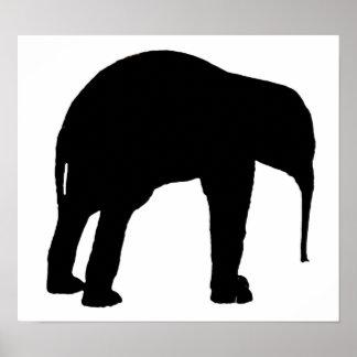 Elephant Calf Silhouette Poster