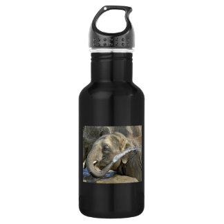 Elephant Calf Stainless Steel Water Bottle