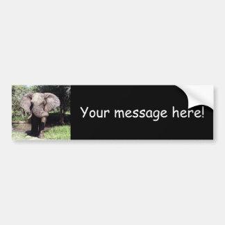 Elephant Car Bumper Sticker