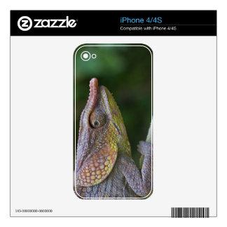Elephant chameleon, Madagascar Skin For iPhone 4S