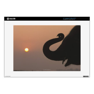 """Elephant, Chitwan National Park, Nepal Decals For 15"""" Laptops"""