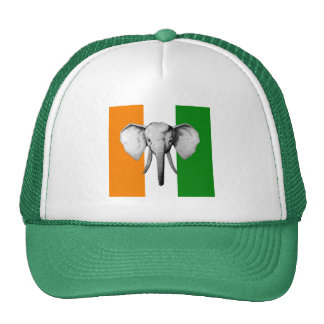 Elephant cote d ivore Ivory Coast gifts Mesh Hat