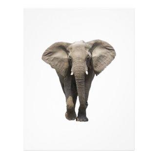 Elephant  design letterhead