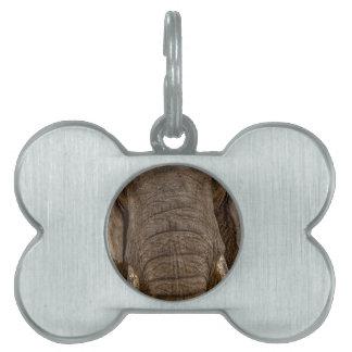 Elephant Dog plaque-Placa para perros elefantes Placa De Mascota