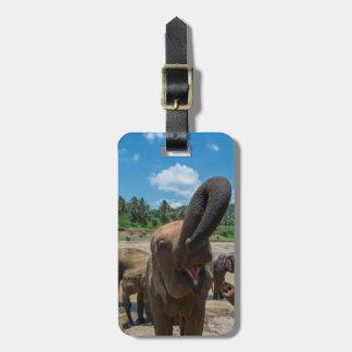 Elephant drinking water, Sri Lanka Luggage Tag