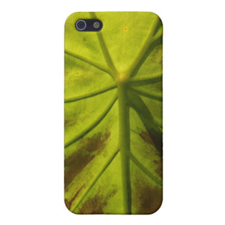 Elephant Ear Leaf iPhone SE/5/5s Cover