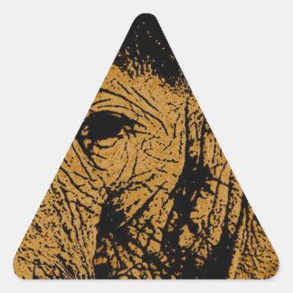 Elephant Eye Triangle Sticker