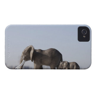 Elephant Family background blue sky iPhone 4 Cover