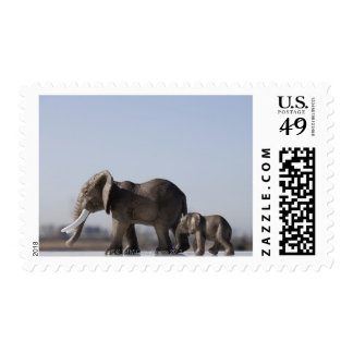 Elephant Family background blue sky Postage