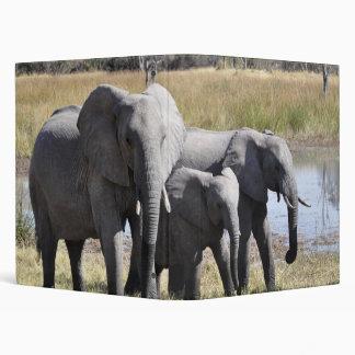Elephant family binder