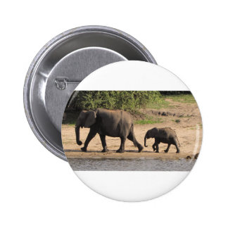 Elephant family pinback buttons
