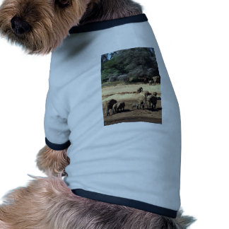 Elephant family by the river doggie t-shirt