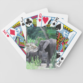Elephant Family Deck of Cards