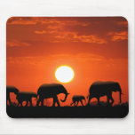 Elephant family mouse pads