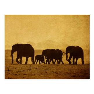 Elephant Family Postcard