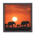Elephant family premium keepsake boxes