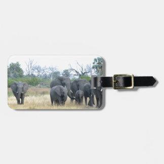 Elephant Family Tom Wurl.jpg Bag Tag