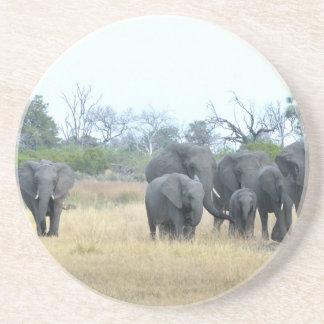 Elephant Family Tom Wurl.jpg Coaster