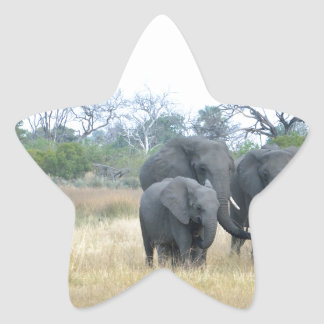 Elephant Family Tom Wurl.jpg Star Sticker