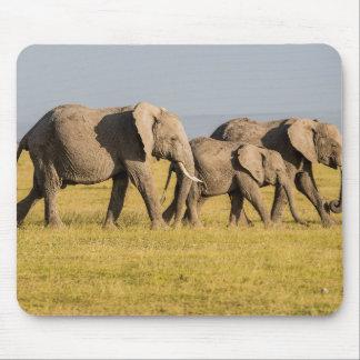 Elephant Family Walking Mouse Pad