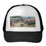 elephant hats