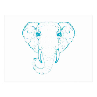 Elephant head. postcard