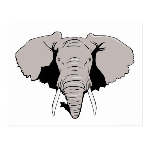 Elephant Head Postcards