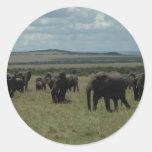 Elephant herd Maasai Mara, Kenya Classic Round Sticker