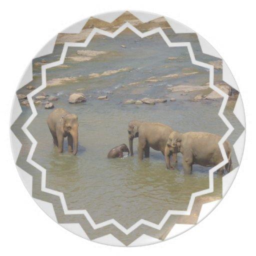Elephant Herd Plate