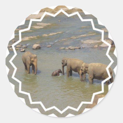 Elephant Herd  Sticker