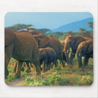 Elephant Herd Walking Mouse Pad