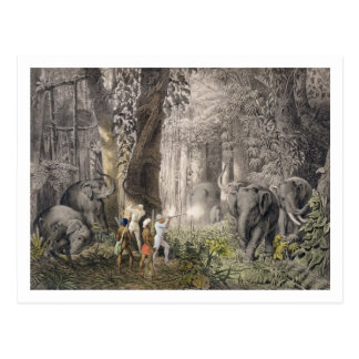 Elephant hunt in the region of Logalla, from 'Trav Postcard