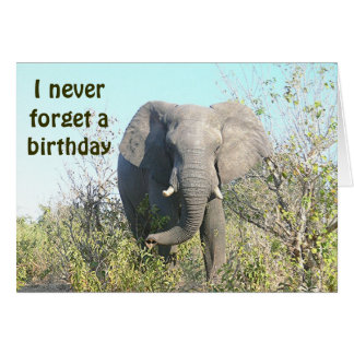 """ELEPHANT/""""I Never Forget A Birthday""""/BELATED BIRTH Card"""