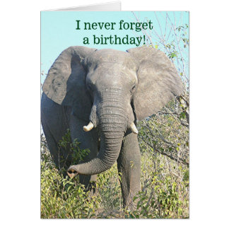 ELEPHANT/I NEVER FORGET A BIRTHDAY/EXCEPT YOURS CARD