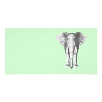 Elephant in Black and White Card