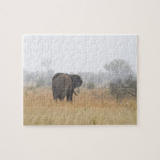 Elephant in early morning fog, Kruger National Jigsaw Puzzle