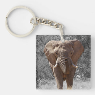 Elephant in Namibia Keychain