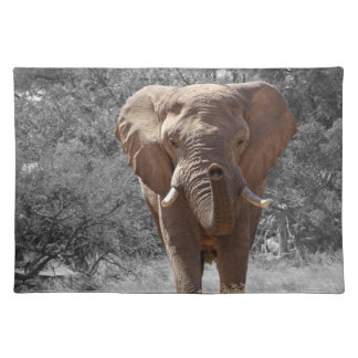 Elephant in Namibia Placemat