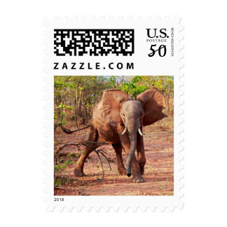 Elephant in Warning Pose Postage