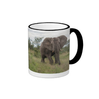 elephant in wild ringer coffee mug