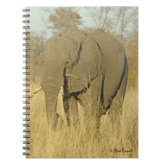 Elephant Journal Note Book