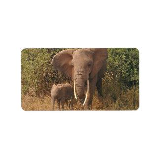 Elephant Address Label